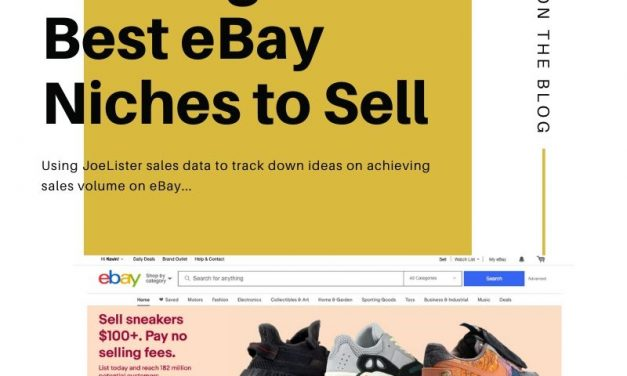 What are the Best eBay Niche Products?