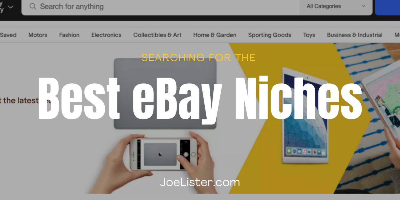 What are the Best eBay Niches?